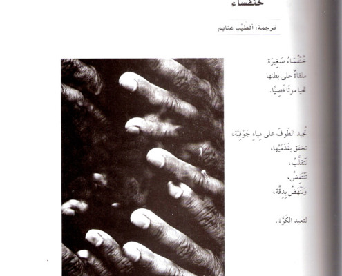 Poems by Efrat Mishori, Arabic. p. 5